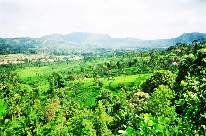 Bali_59