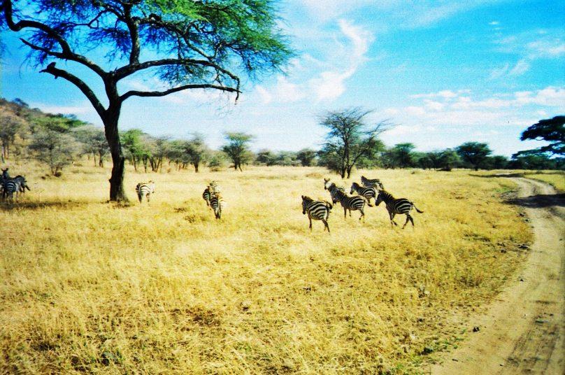 Reservas de la Biosfera en África
