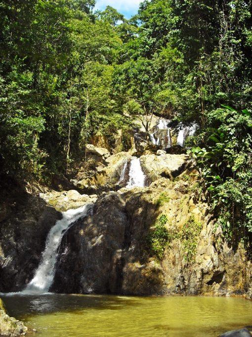 Tobago_47
