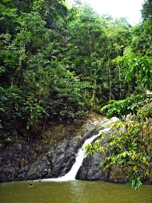 Tobago_49