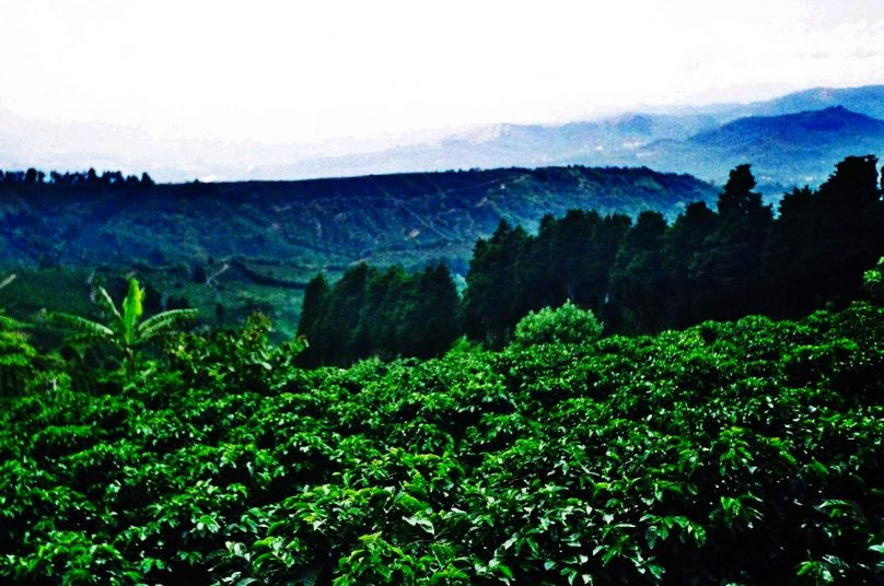 Valle Central (Costa Rica)