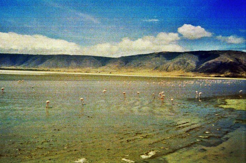Ngorongoro_10