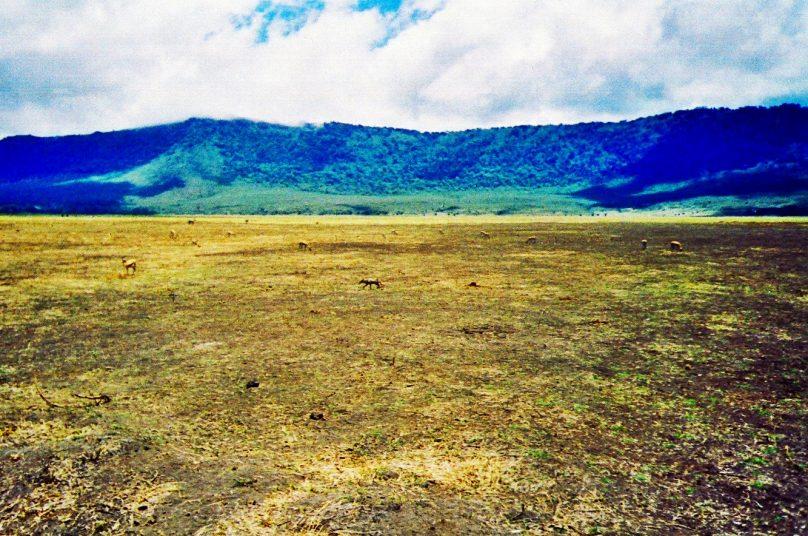 Ngorongoro_17