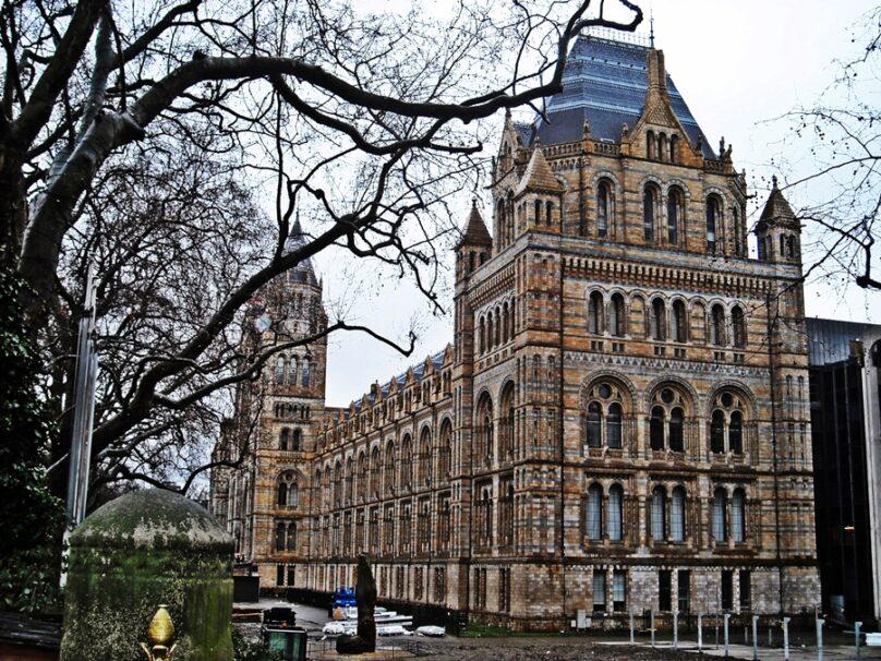 Museo de Historia Natural (Londres, Reino Unido)