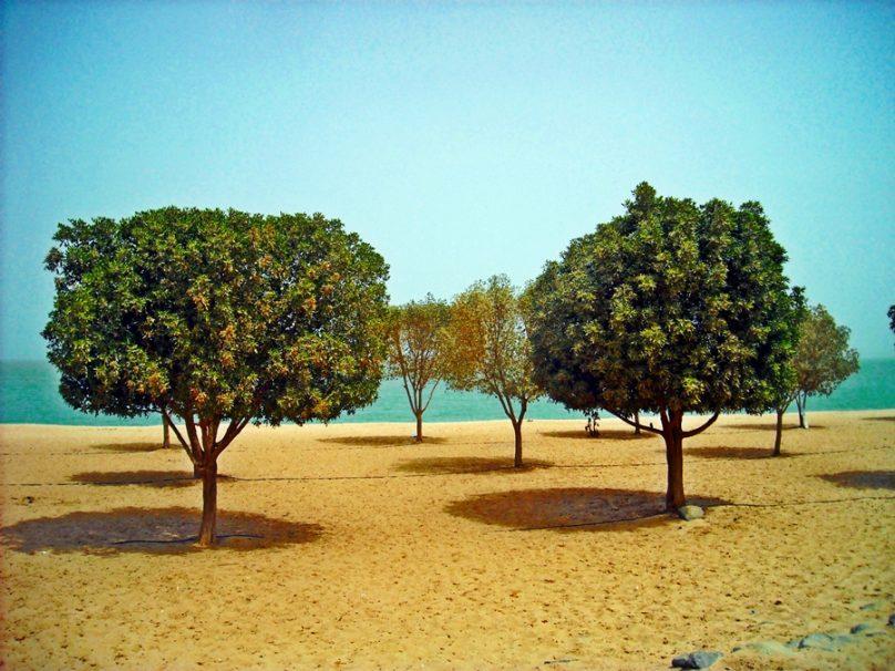 Kuwait_42
