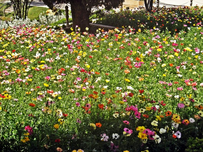 12 jardines monumentales que estimo vitales