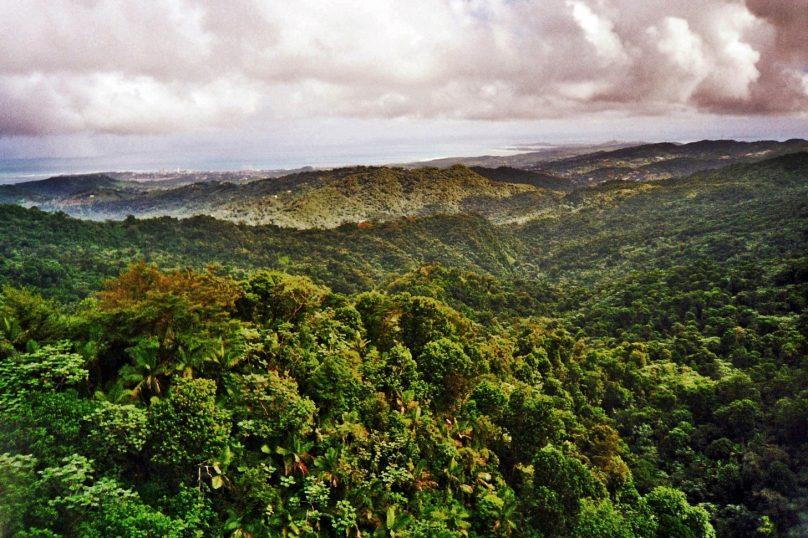 El Yunque (Municipio de Río Grande, Puerto Rico)