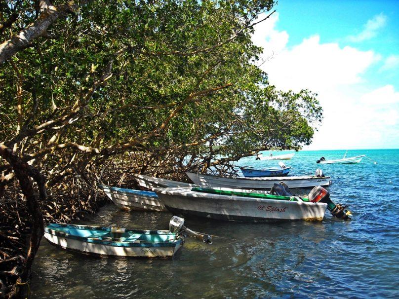Tobago_108
