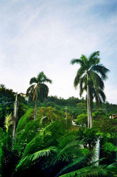 Jamaica_07