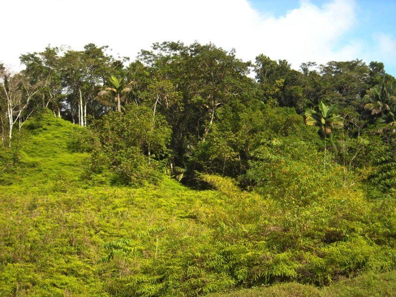 Tobago_78