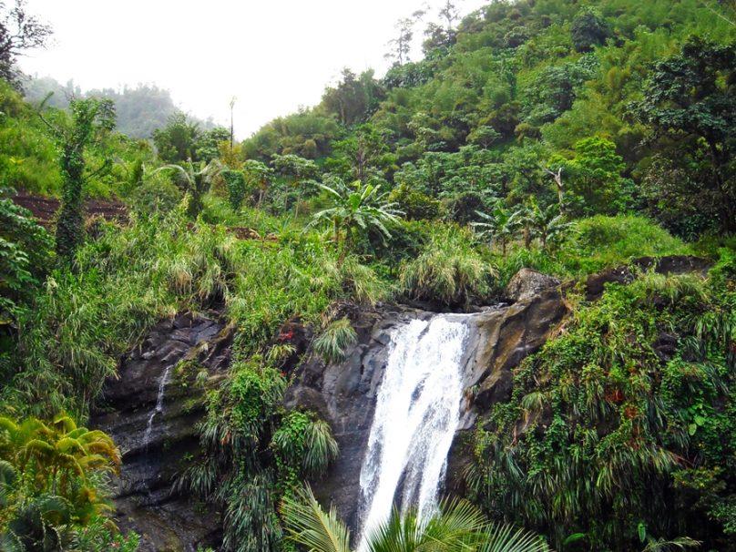 Grenada_81