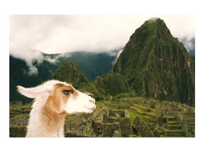 Machu Picchu (por Jorge Sánchez)