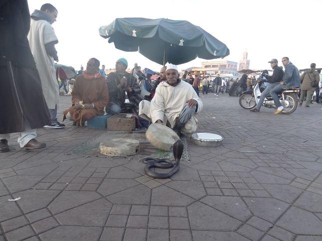MarrakechJorge_04