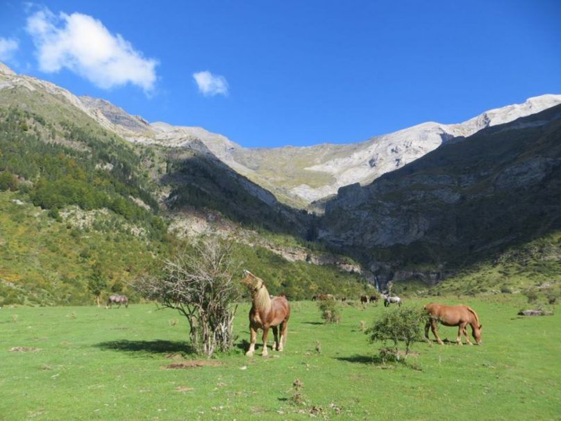 PirineosJorge_03