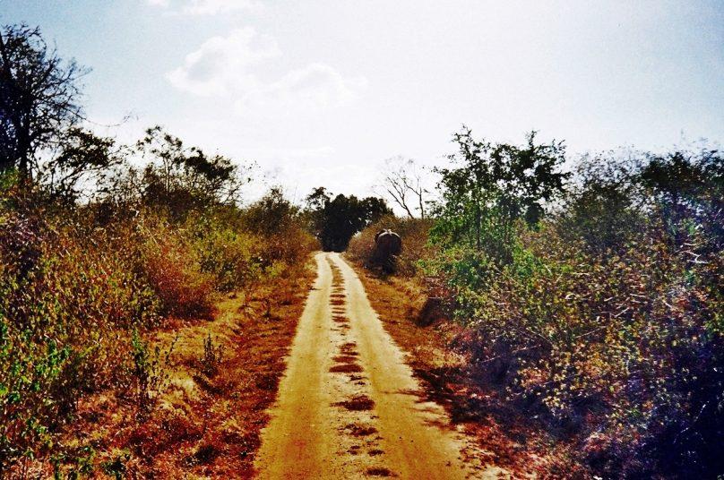 Uda Walawe (Distrito de Ratnapura, Sri Lanka)