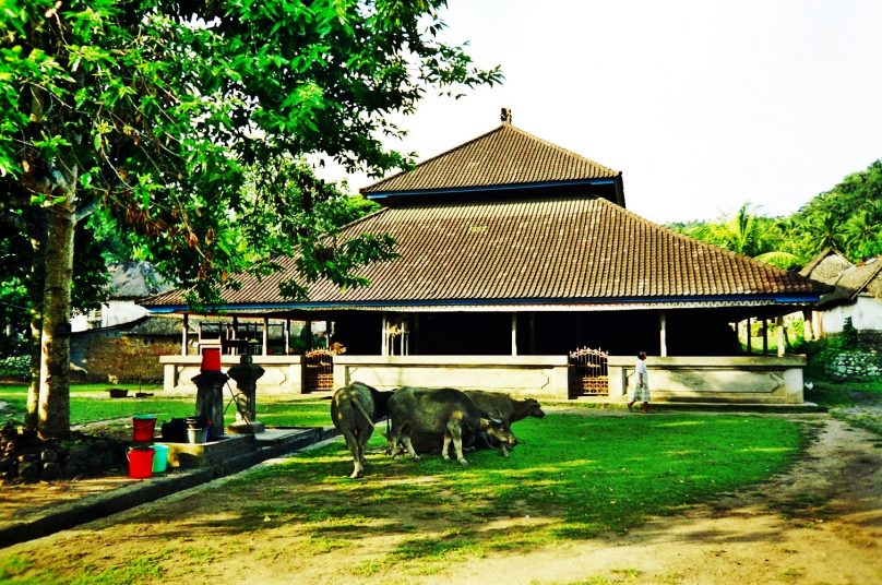Bali_66