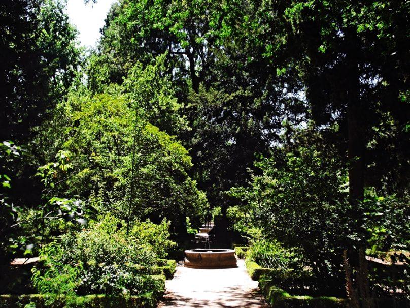 JardinBotanico_02