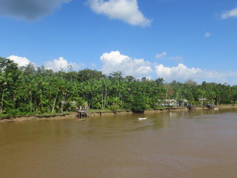 AmazoniaJorge_02