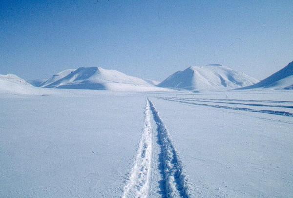 Svalbard (por Jorge Sánchez)