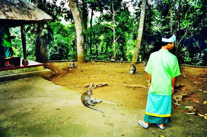 Bali_88