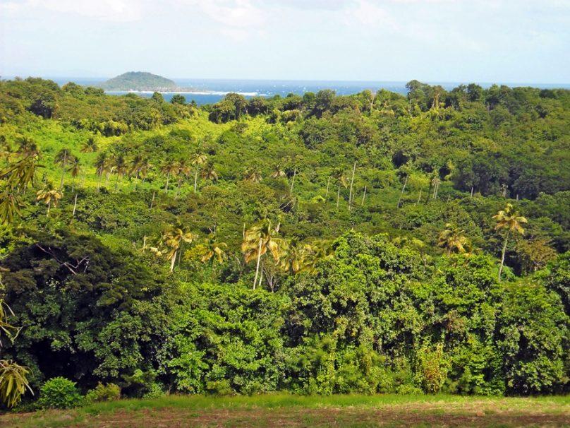 Grenada_118