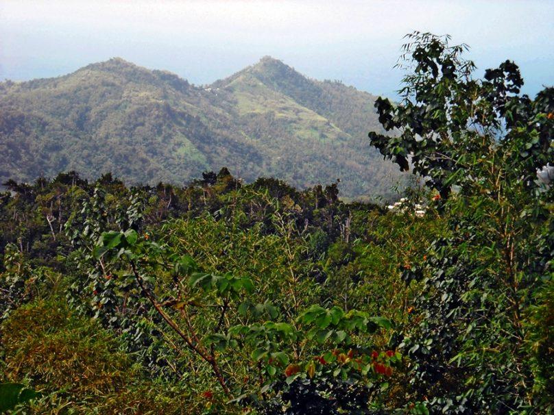 Grenada_43