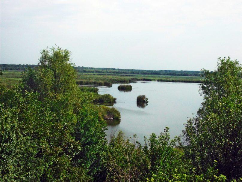 Reserva natural de Srebrna (Provincia de Silistra, Bulgaria)