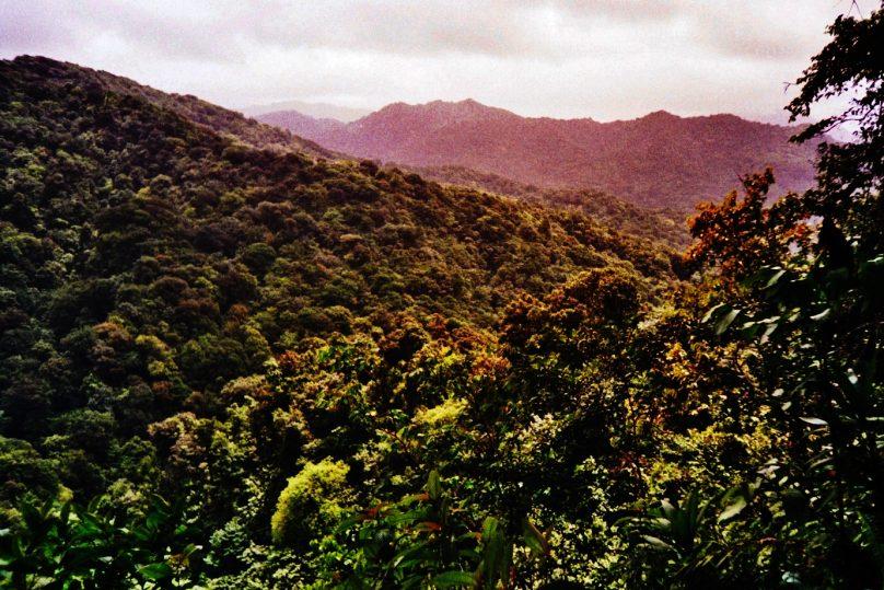 Morne Trois Pitons (Dominica)