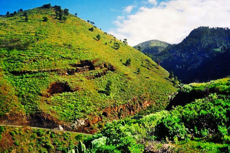 Cuevas de Buracas (Garafía, Canarias)