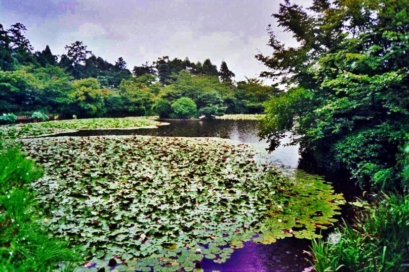Kioto_07