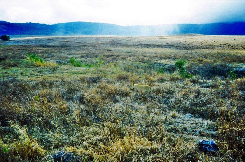 Ngorongoro_06