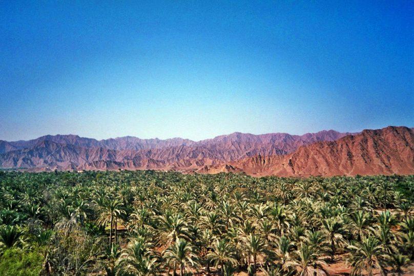 Wadi Wurayah (Emirato de Fujairah, Emiratos Árabes Unidos)