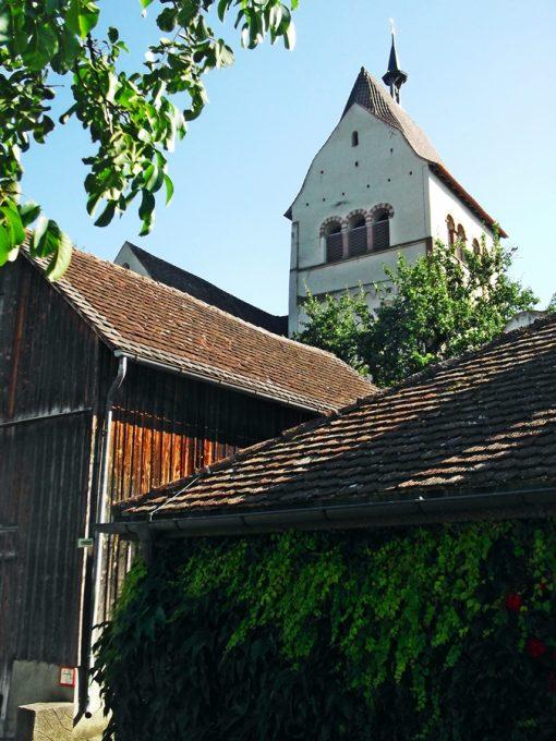Reichenau_11