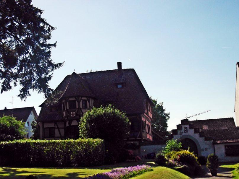 Reichenau_12