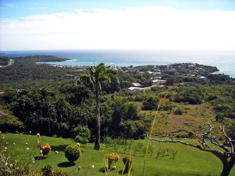 Tobago_06