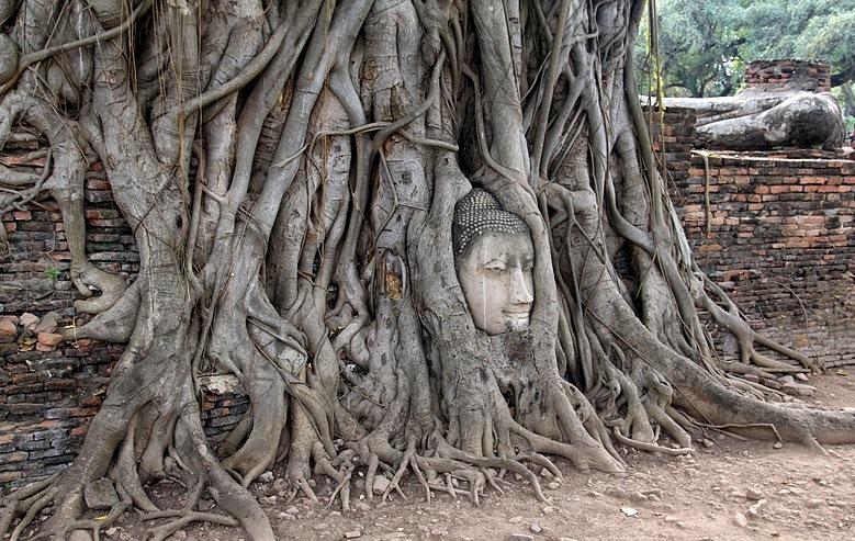 AyutthayaJorge_02